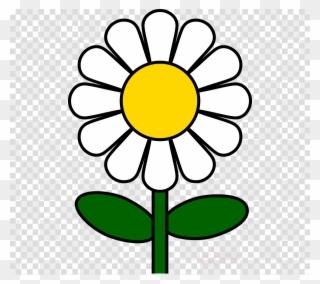 320x284 Daisy Heraldic Art