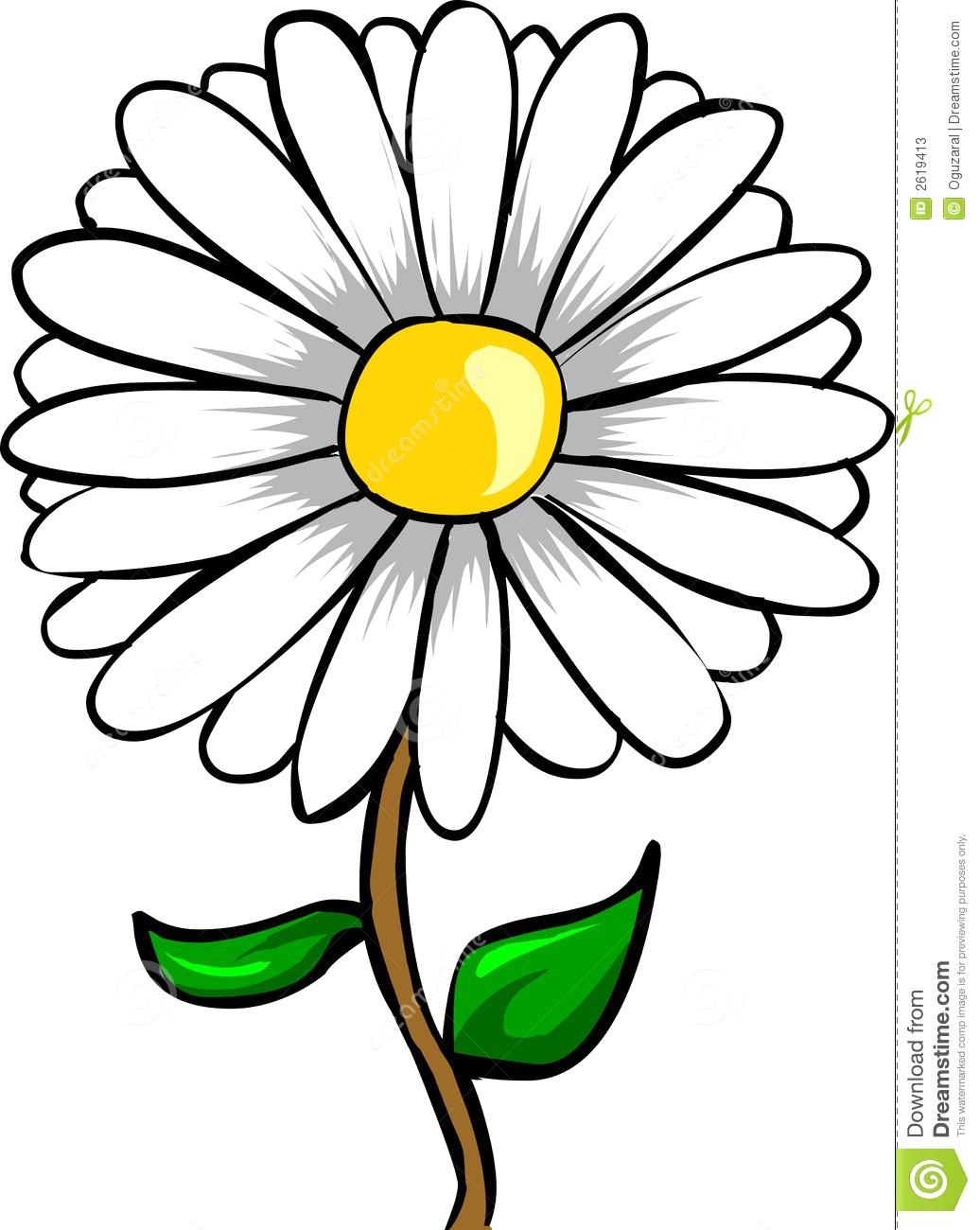 1036x1300 Gerbera Daisy Clipart Clip Art