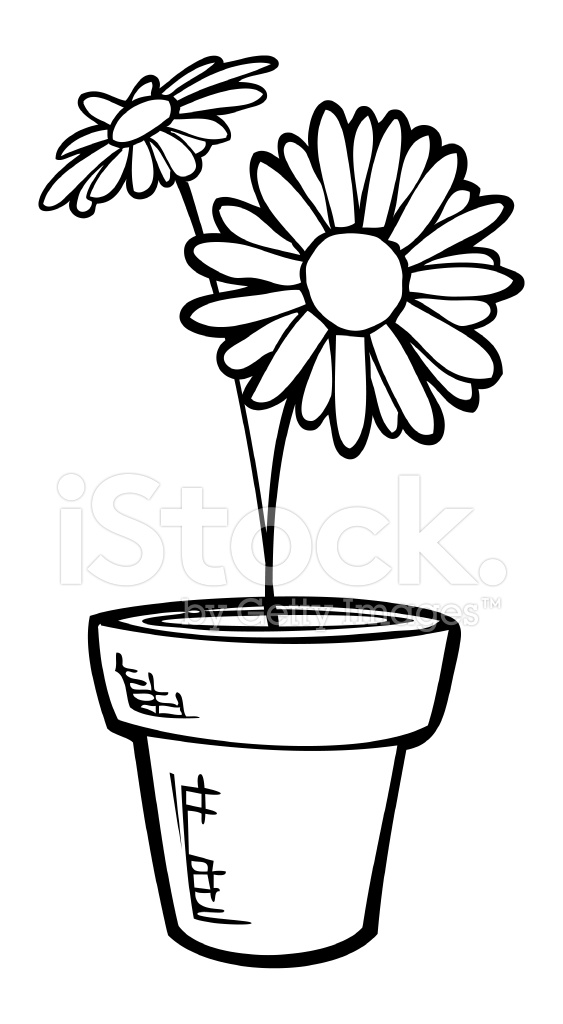 563x1024 Potted Daisy Line Art Stock Vector