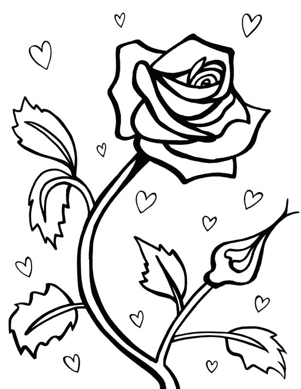 618x800 Coloring Pages Draw A Rose For Kids Coloring Pages Flowers Drawing