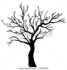 236x246 best bare tree images bare tree, nature, dark forest