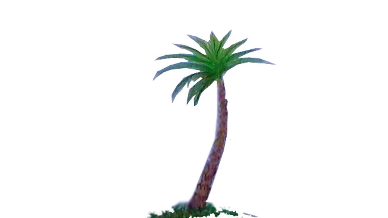 1280x720 date palm drawinghow to draw a date palm step