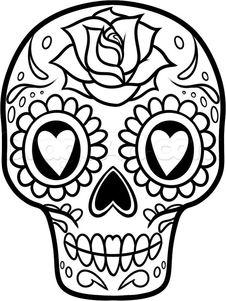 736x981 How To Draw A Sugar Skull Easy Step Day Of The Dead Crafts
