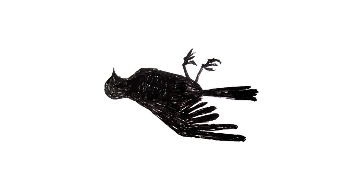 1200x630 Dead Bird