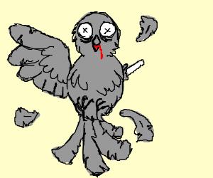300x250 The Dodo Bird