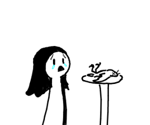 300x250 A Girl Keeps A Dead Bird As A Pet