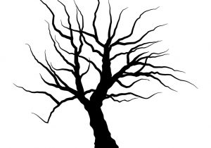 300x210 drawing of a dead tree dead tree drawing black and white