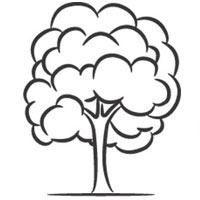 200x200 deciduous tree coloring pages surfnetkids