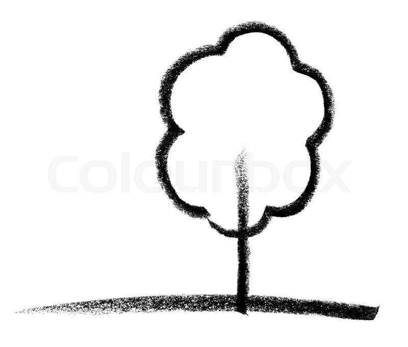 800x681 deciduous tree sketch stock photo colourbox