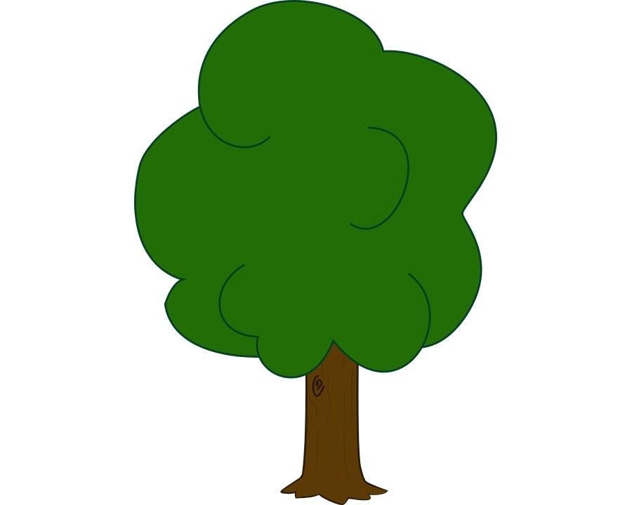 900x720 oak tree drawings how to draw oak tree with pencils white oak tree