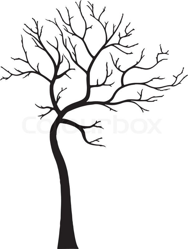 604x800 ornamental deciduous tree without stock vector colourbox
