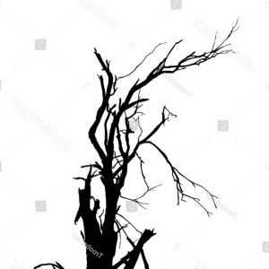300x300 set nine deciduous trees no leaves soidergi