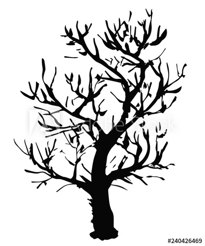 417x500 black vector outline of a deciduous tree without leaves is