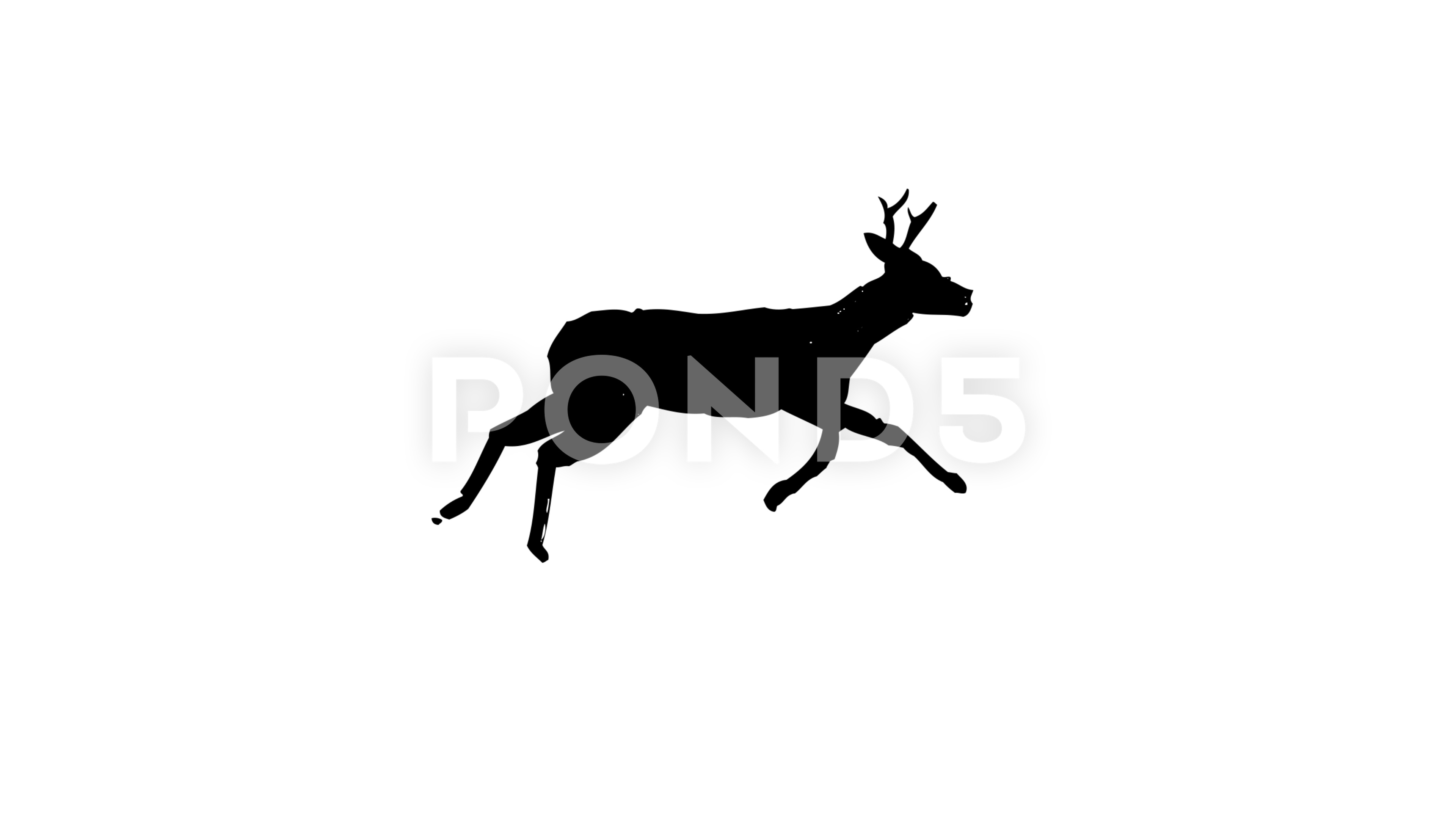 3840x2160 Running Deer Drawing Animation Drawn With Japan Calligraphic