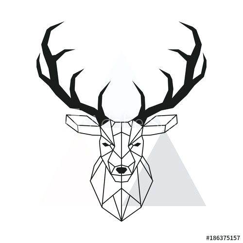 500x500 How To Draw Antlers The Art Supplies For This Project How To Draw