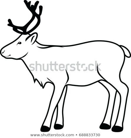 445x470 Raindeer Drawing Reindeer Contour Drawing Vector Reindeer Face