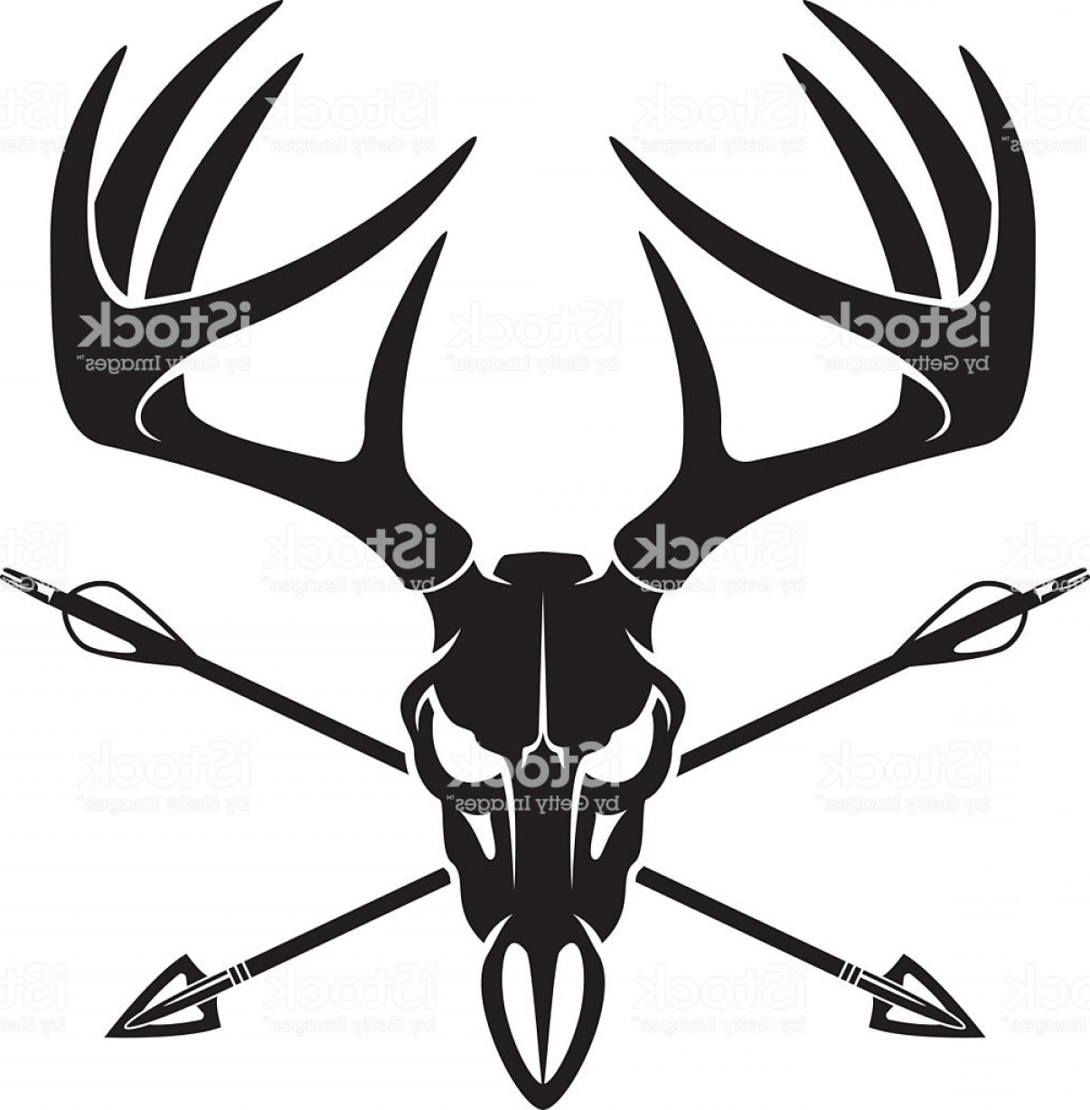 1206x1228 Whitetail Deer Buck Skull With Crossing Hunting Arrows Gm Orangiausa
