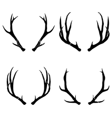 219x230 Antlers