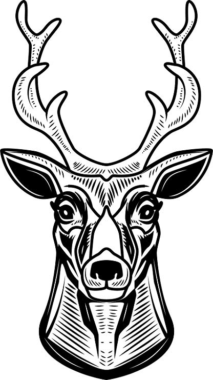 416x741 Black And White Line Art Deer Head Trophy Cartoon