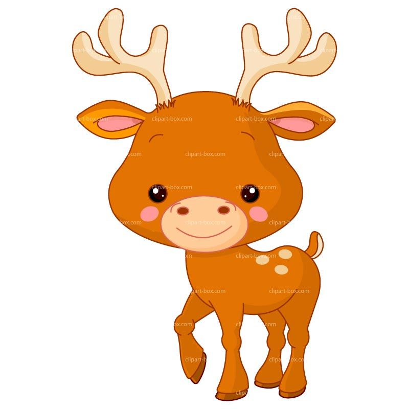 800x800 Cute Baby Deer Clipart Free Clipart Images School Baby Clip