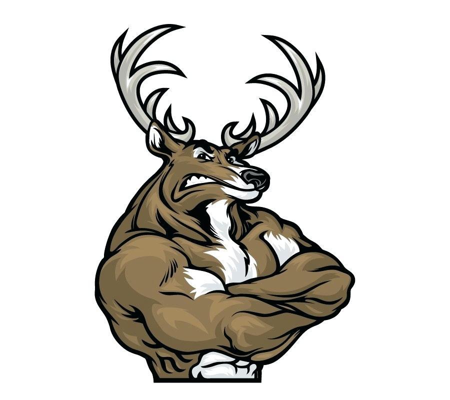 900x800 Drawing Of A Deer Drawing Deer Easy Zupa
