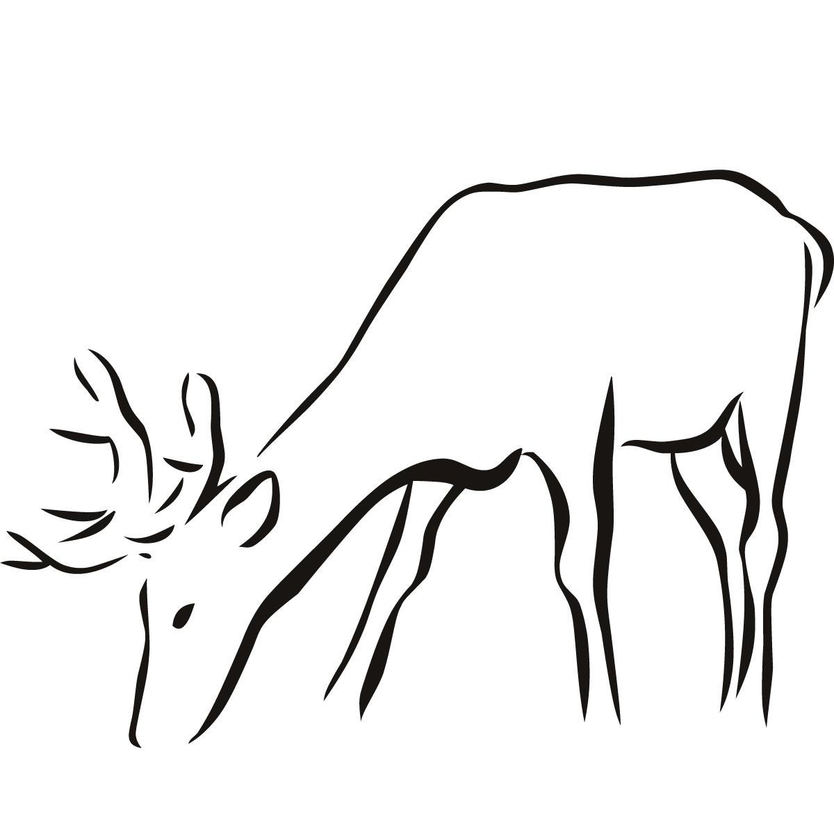 Deer Drawing Easy