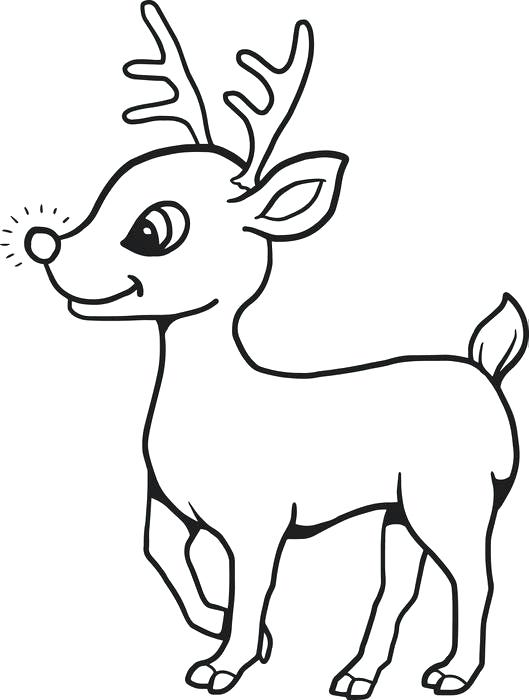 529x700 How To Draw An Easy Reindeer How To Draw A Deer Head Easy Draw