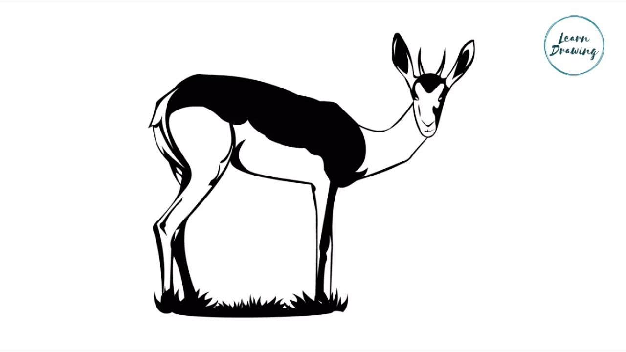1280x720 How To Draw A Deer Step