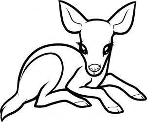 302x250 how to draw a baby deer, baby deer step crafts drawing deer