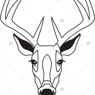 336x336 Deer Antler Drawing Easy Whitetail Big Simple Iydunetwork