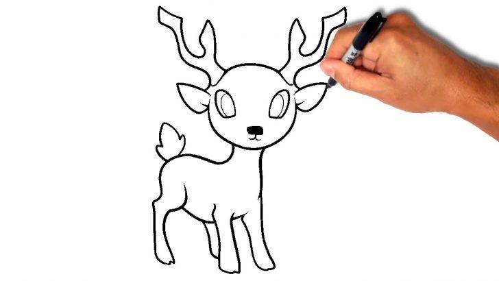 728x410 Deer Drawing Easy Step