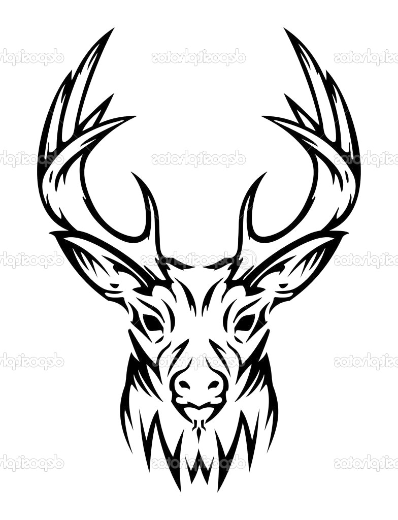 784x1024 Cool Tribal Drawing Deer Tatoo