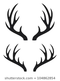 206x280 Huge Collection Of 'deer Horn Drawing' Download More Than