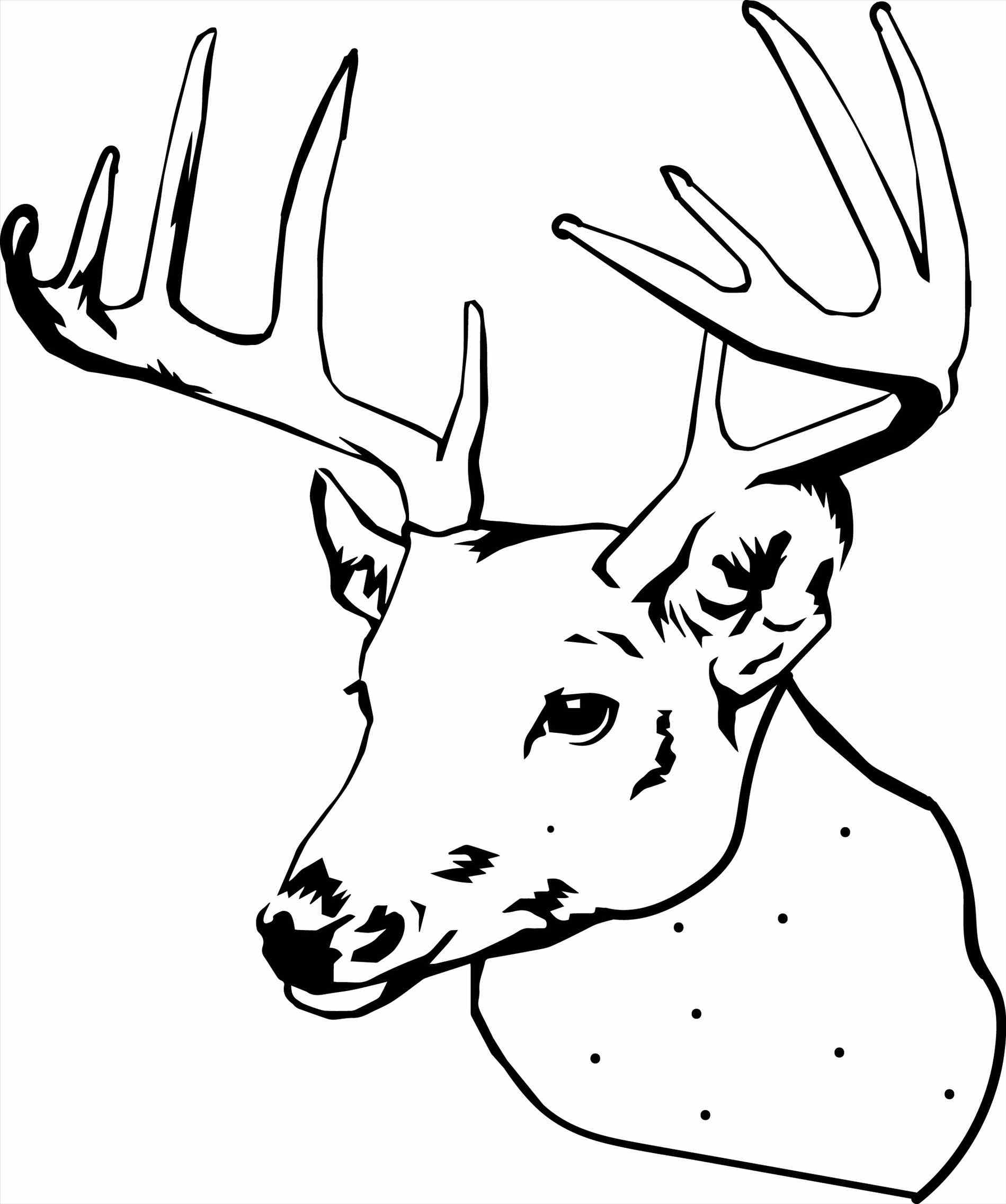 1899x2272 Reindeer Coloring Clipart With Download Christmas Deer Drawing
