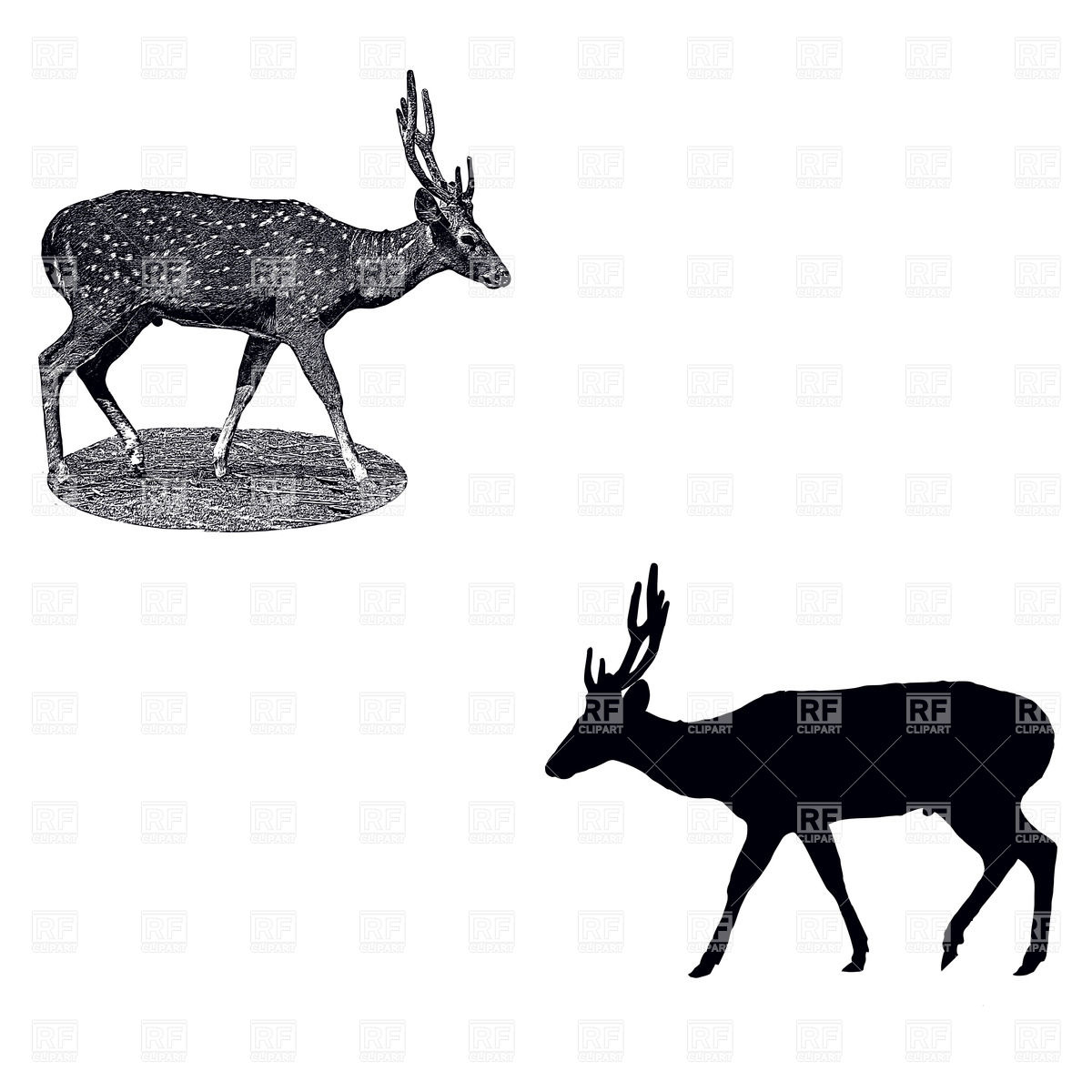 1200x1200 Silhouette Of Standing Deer And Imitation Of Ink Drawing Vector