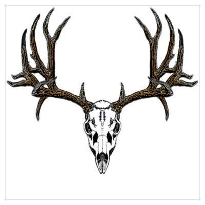 400x400 deer skull drawing deer skull drawings cafepress wall art posters
