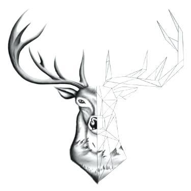 375x375 drawing a deer how to draw a deer head buck dear head step deer