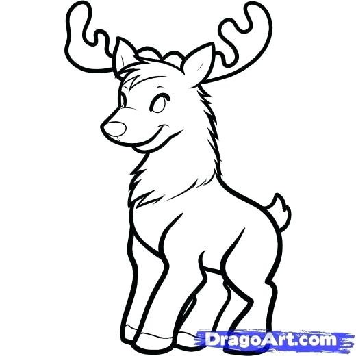 520x520 How To Draw A Reindeer For Kids Step