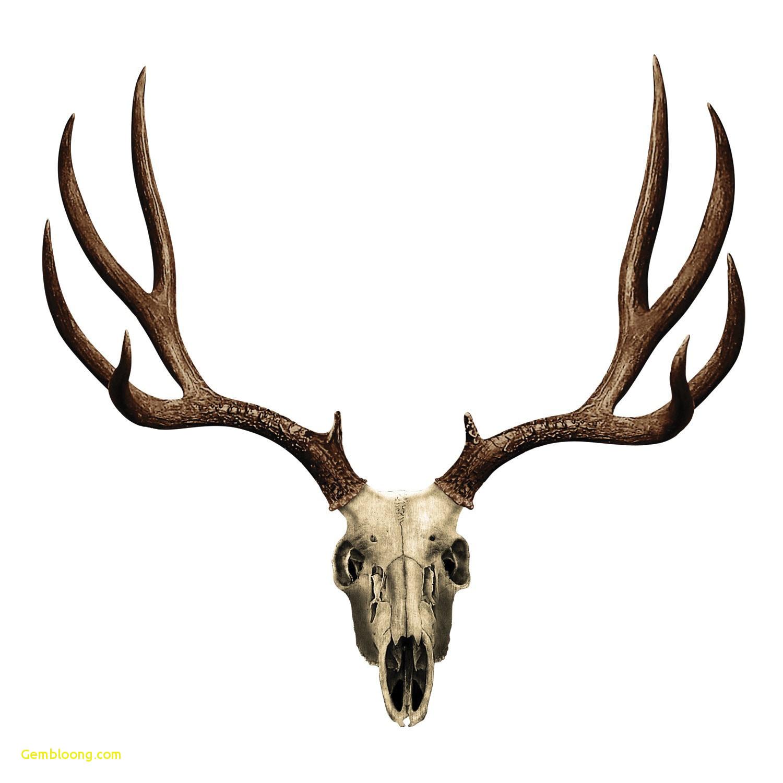 1500x1500 Christmas Deer Head Drawing Step