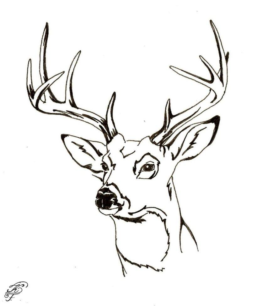 819x976 Deer Face Coloring Pages