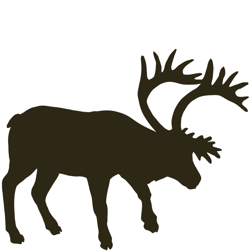 800x800 Caribou Drawing Easy Huge Freebie! Download For Powerpoint