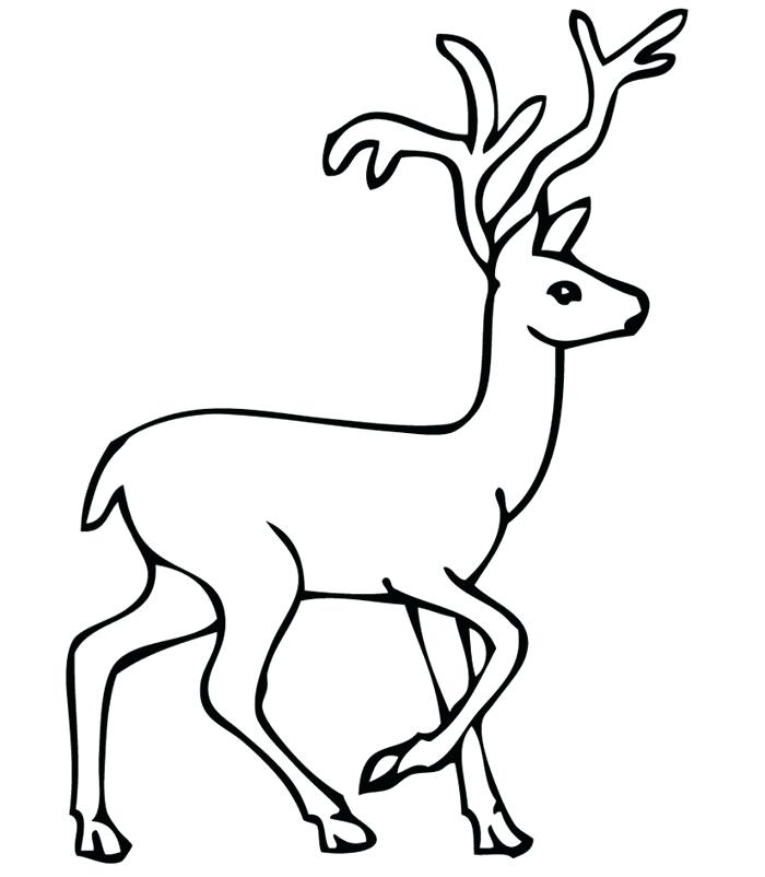 700x802 Reindeer Drawing Template Body Outline Animal Templates Free Face