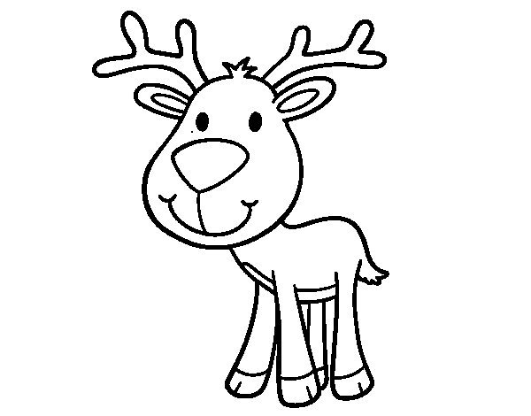 600x470 Deer Face Coloring Pages Coyote Coloring Pages How To Draw