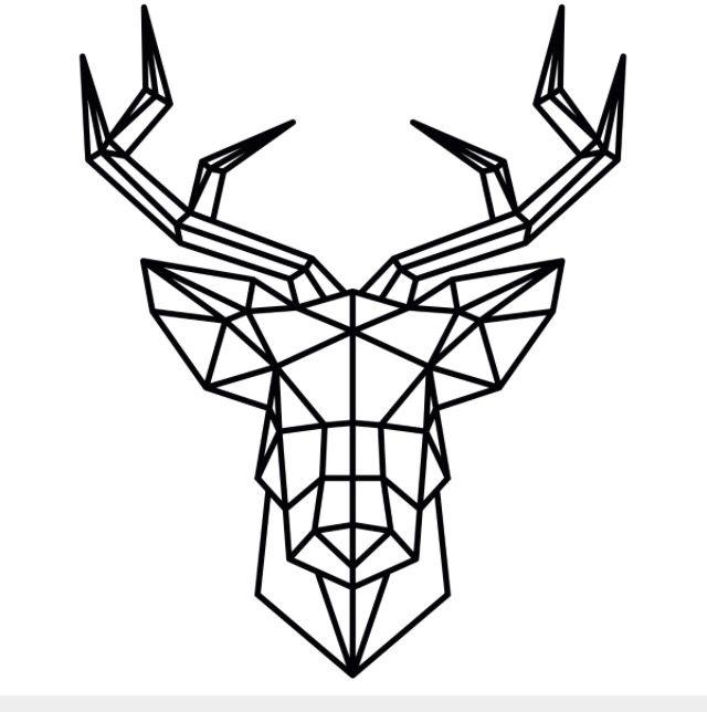Deer Head Drawing
