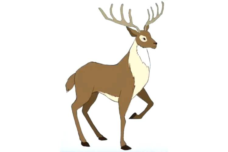 750x500 How To Draw Deer How To Draw A Deer Head Step