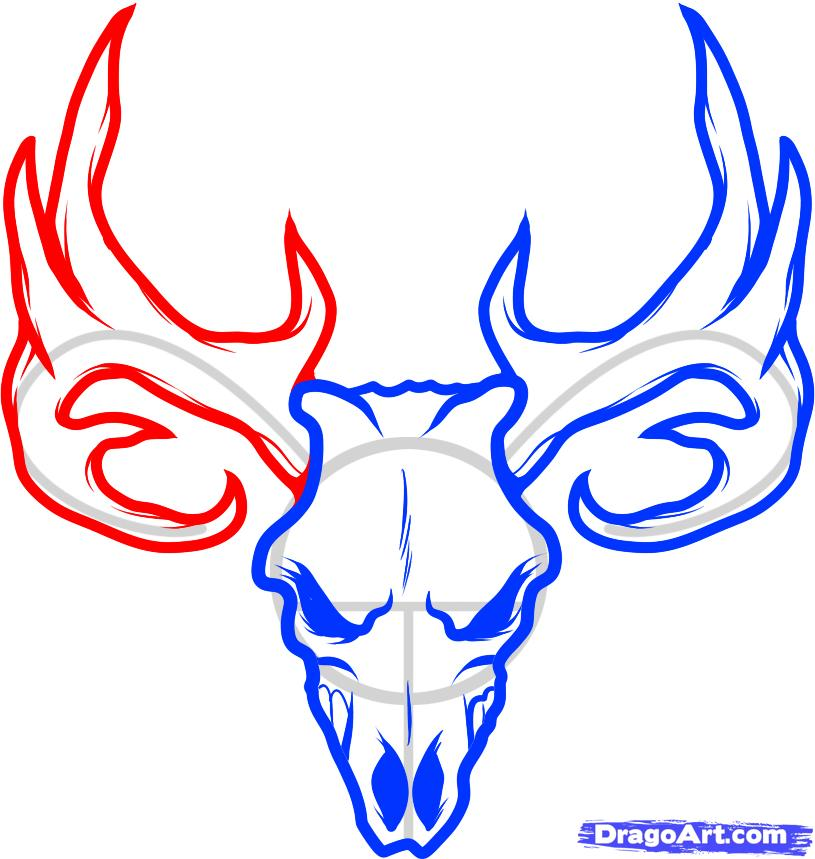 Deer head easy. Collection of skull clipart