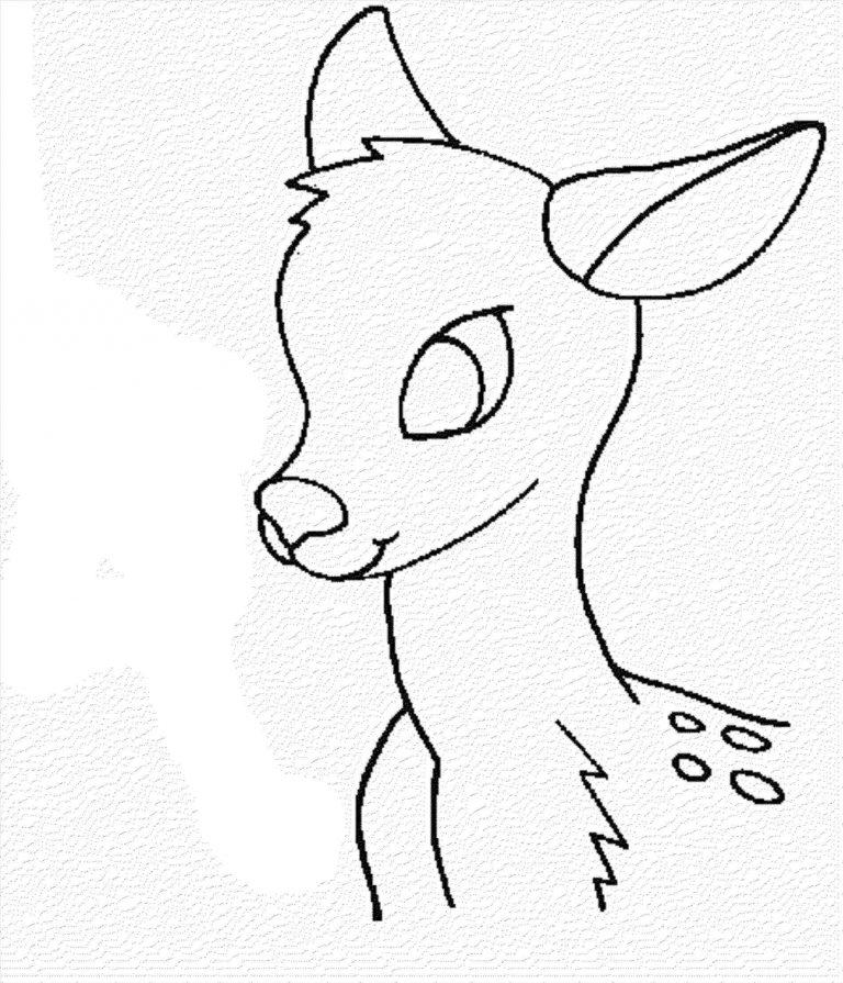 768x895 Kids Rhdragoartcom Deer Drawing At Getdrawingscom Free Personal