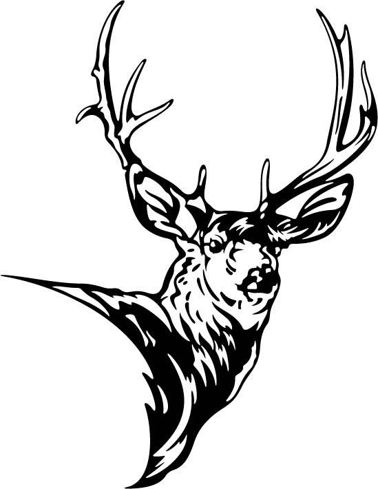 549x710 Deer Antlers Clipart Inspirational Deer Clipart