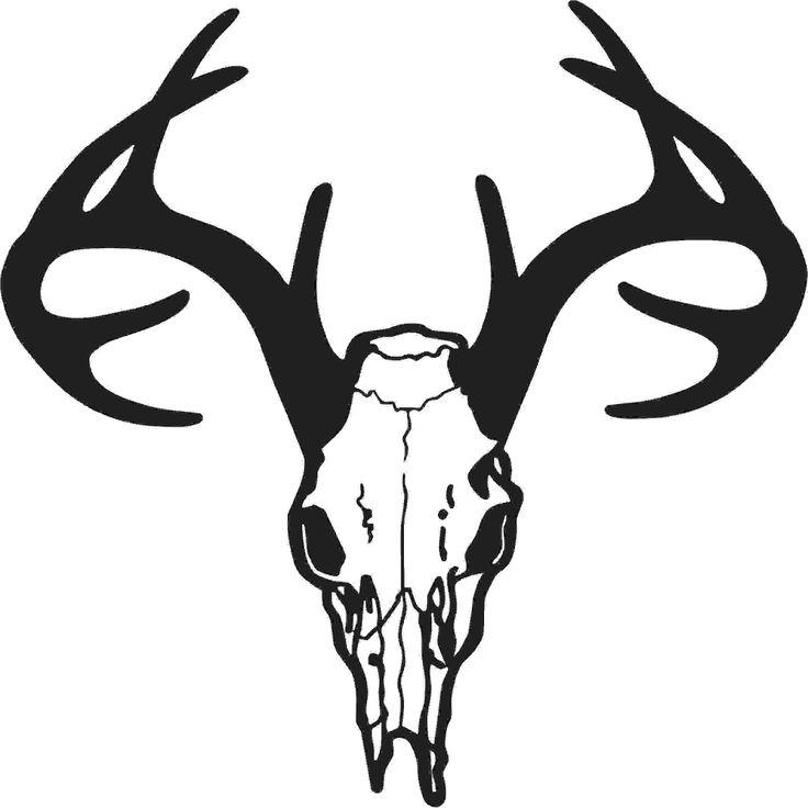 736x736 Deer Line Art