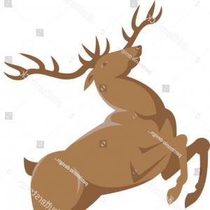 300x300 Deer Skull Illustration Drawing Engraving Ink Line Art Vector